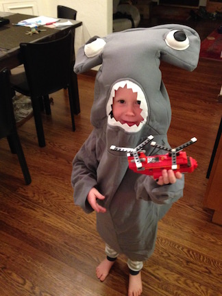 2014: Ingrid didn't make this one, but when your son wants a Hammer Head Shark costume and you find one online like this one, why would you test your luck?