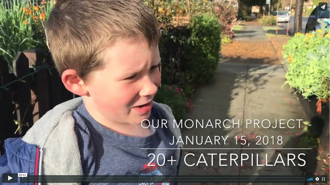 Monarch Project Log - January 15, 2018